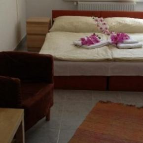 Hostele i Schroniska - Hotel Timon