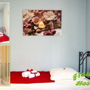 Hostele i Schroniska - Hostel Flower