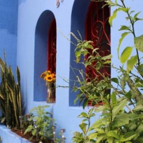 Hostele i Schroniska - Red Blue Hostel