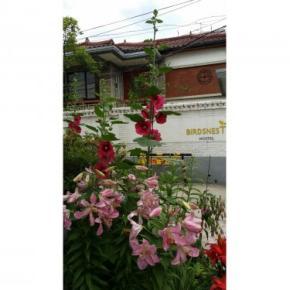 Hostele i Schroniska - Birdsnest Hostel Hongdae