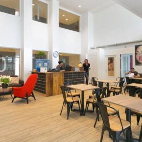 Hostele i Schroniska - Dutchies Hostel