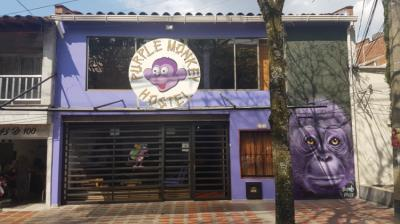 Hostele i Schroniska - Purple Monkey Hostel