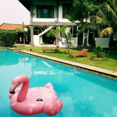 Hostele i Schroniska - Freedom Hostel Bali