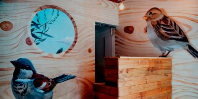 Hostele i Schroniska - Bird House Hostel
